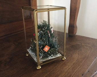 Glass and Brass Footed Display Box, Terrarium, Christmas Tree, Rectangular