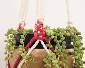 Macrame planter-macrame Plant Hanguer-natural cotton dyed cherry color