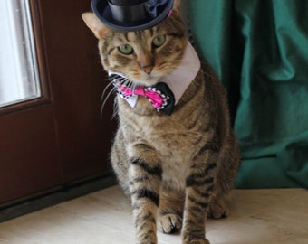 Cat Top Hat, Dog Top Hat, Wedding Top Hat Dogs and Cats - The Aristocrat