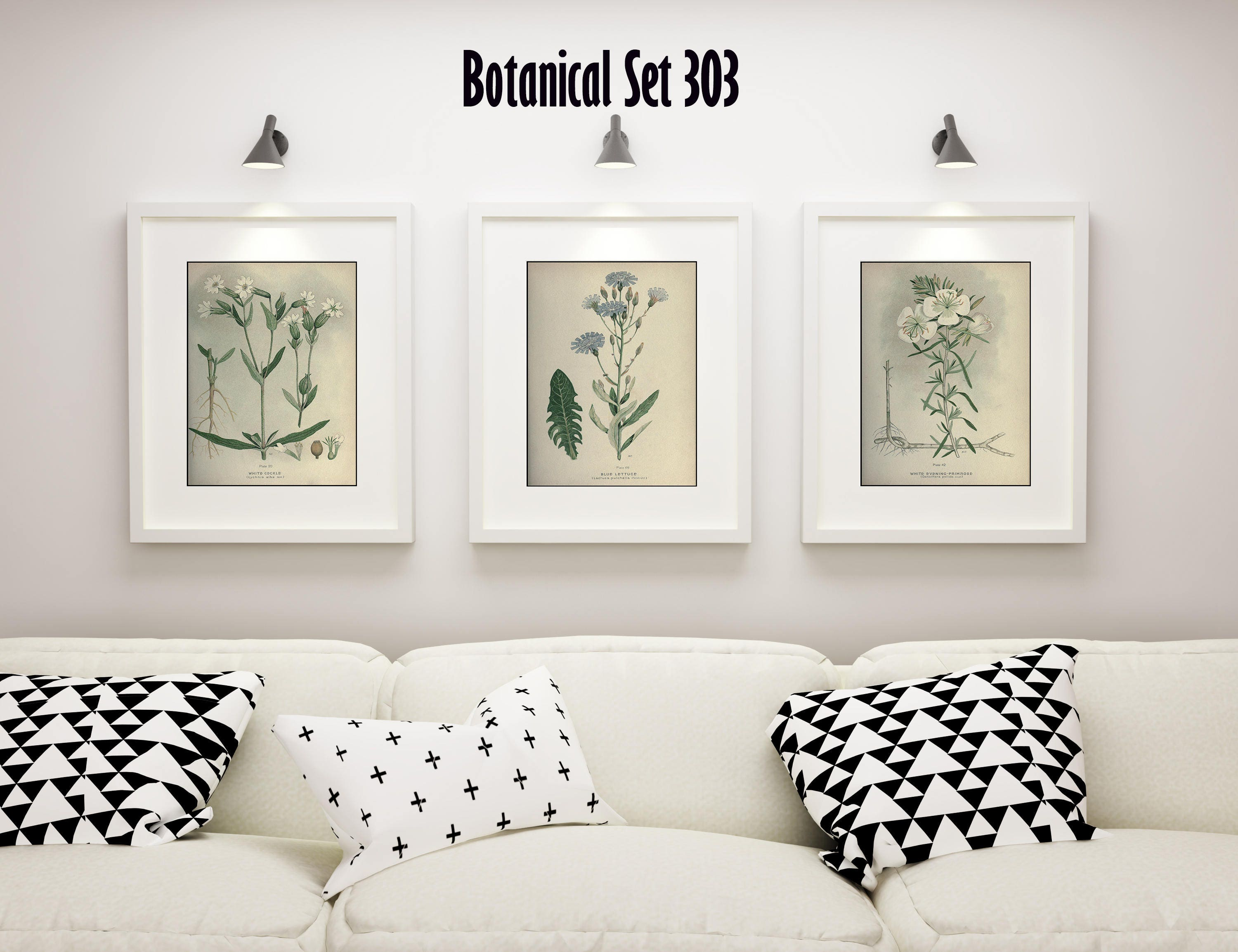 White Flower Print Set Of 3 Botanical Prints Antique