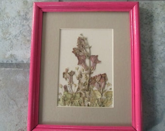 Pressed Snapdragon Picture