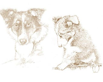 Pet pencil sketches. 100% Hand drawn, not digital. Pet portrait drawings, Animal lovers special gift. Draw my pet. Portraits of loved ones.