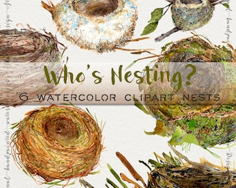 Handpainted clipart, woodland clipart, watercolor clipart, wildlife clipart, watercolor bird nest, nursery clipart, wedding clipart