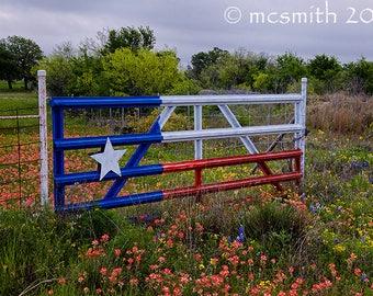 Texas Wildflower Gate