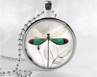 DRAGONFLY Necklace, Dragonfly Jewelry, Dragonfly Pendant, Dragonfly Charm, Glass Photo Art Pendant, Insect Jewelry
