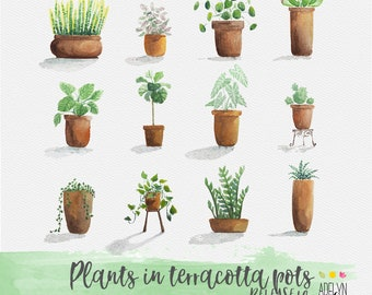 Set of 12 watercolor plants in Pots. PNG bundle. Digital element. Clip art. Digital scrapbooking. Terracotta pots