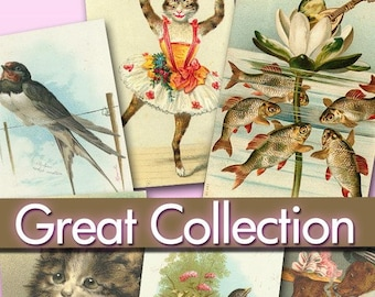 Download collection digital images 421 jpeg files animals old altered art Birds Cats Dogs photos puppies labels jewellery decoupage / C114