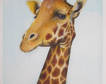 Giraffe. Signed, Limited Edition Giclee Print