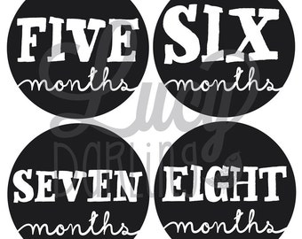 Baby Monthly Stickers - Little Sophisticate - Months 1-12 - Neutral - Boy and Girl Monthly Stickers
