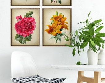 BOTANICAL Print SET of 4 Flower Prints in Warm Tones, Flower Illustration, Garden Nature Vintage Botanical Art, Antique Flowers