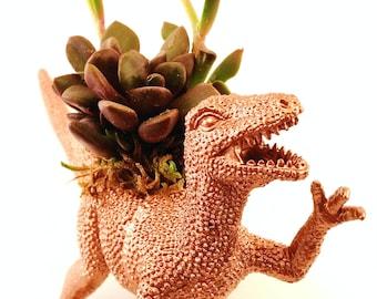 Velociraptor Dinosaur Planter + Succulent \\ Succulent Planter \\ Desk Accessory \\ Dorm \\ Home Decor \\ Gift \\ Office Decor \\ Desk Plant