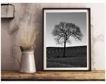 Fine Art Photography, Home sweet home, Black and white Photography, Landscape Photography