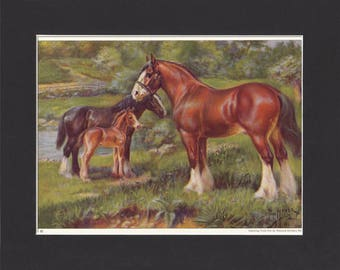 Clydesdale Horse Print 1923 By Edward Miner Print of Signed Painting Mounted with Mat - Clydesdale Print Vintage Print