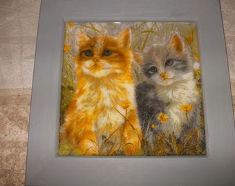 Frame cats kittens