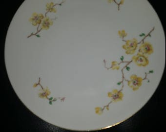 Bavaria Johann Haviland  TWO Saucers Yellow Flowers  E653
