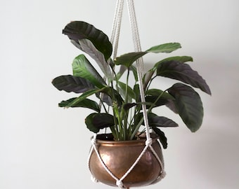 Minimalist copper macrame plant hanger