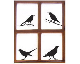 Bird Window Sticker Set (4 Decals) Starling, Sparrow, Raven, Blackbird