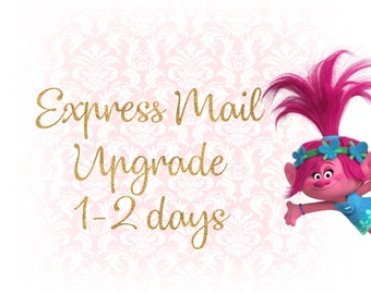 Express Mail Upgrade- LilyandMaxCo