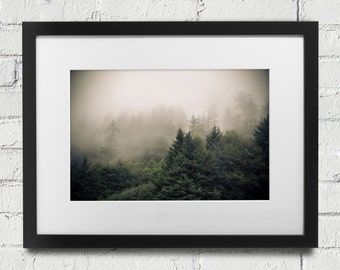 Ecola State Park in Oregon ,Trees in Fog and Mist at, Foggy Fine Art Photography West Coast