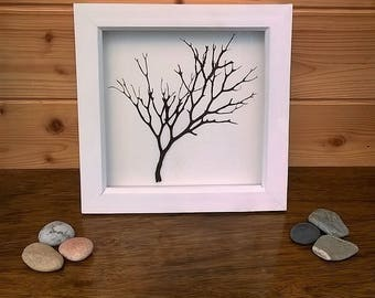 Cornish seaweed wall art, hand-dried and pressed, simple and dramatic, framed and ready to hang