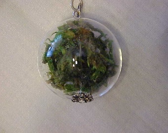 NECKLACE~CHARM~Clear Glass Ball filled with MOSS~From the Oregon Coast~Gathered from the Ocean's Depth~Many Years Ago~Silver Tone Chain