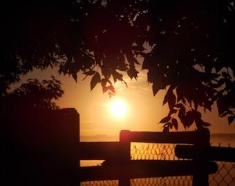 Early morning light II