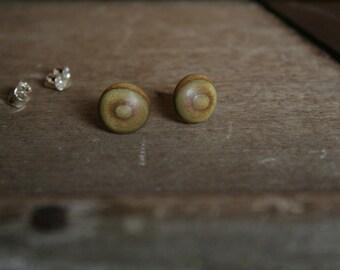 1 pair vinegar tree wood wooden earrings 9 mm plug/nut 925 Silver