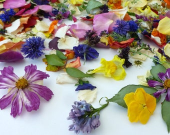 Wedding Confetti, Dried Flowers, Flower Petals, Wedding Decoration, Flower Girl, Table Decor, Biodegradable, Centerpieces, 6 Boxes or Bags