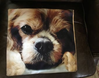 Cavalier King Charles Spaniel, Blenheim Pet Portrait Pillow Cover, Top Quality, Double Sided, Zipper, Machine Washable, Super Soft!