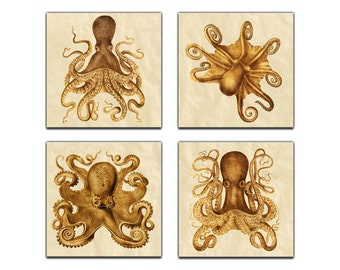 Octopus Collection Ernst Haeckel  Reproduction - 4 Panel Canvas Giclee