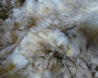 Rambouillet Fleece Raw 20  Micron One Pound  SALE