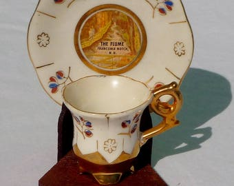 "vintage miniature teacup & saucer with stand featuring ""the flume"" NH"