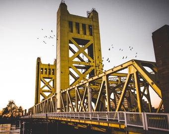 Sacramento Tower Bridge Sunset with Birds (Digital Download)