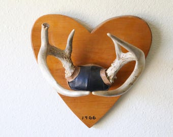 Whitetail Deer antler plaque from 1966 mounted on heart shaped wood plaque