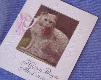 Antique Kitty Cat Greeting Card