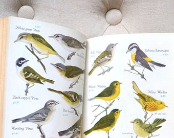 1949 Audubon Modern Bird Guide Book Colored Bookplates
