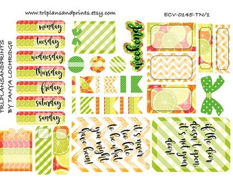 ECV-0145-TN Stickers - Summer Slice! Boho/Shabby Chic/Vintage Kit - A4/A5/Personal/Pocket - Filofax, Happy Planner, Notebooks