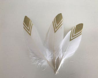 3 large feathers white and gold