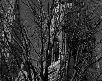 Cathedrals - photo print