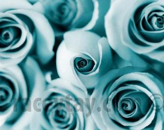Flower Photography, Blue Roses, Bedroom Wall Art, Pastel, Teal, Nursery Decor