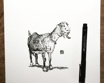 Original Pen And Ink Drawing of a Goat (prints also available)