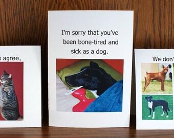 Any six individual greeting cards