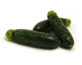 Miniature Zucchini - Fordhook