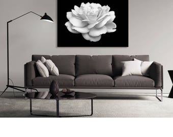 Contemporary Art - Black White Photograph, Modern Wall Art, Rose Photo, Digital Download, Printable Art White Rose Black and White