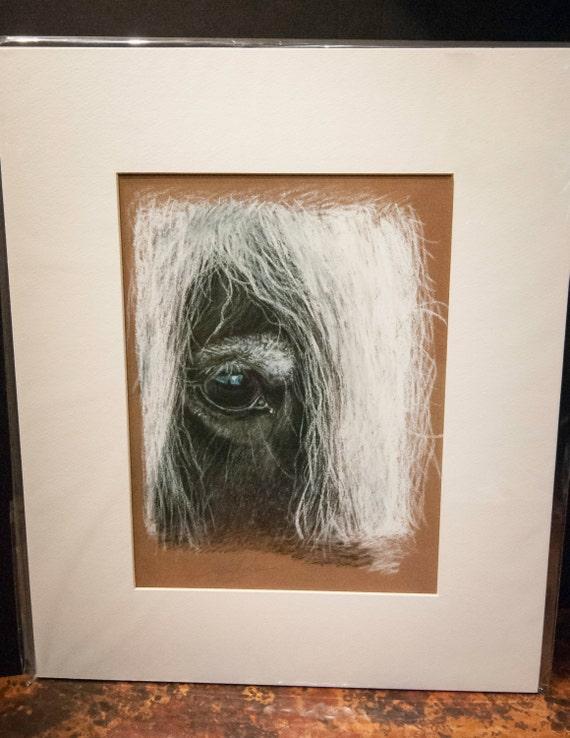 "Fine Art Giclee Print by Terry Kirkland Cook Gypsy Vanner Mare ""Talia's Eye"""