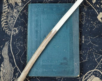 Rare Mugwort Herb Wand from Avebury Landscape - For Dream Magic - Pagan, Wicca, Witchcraft