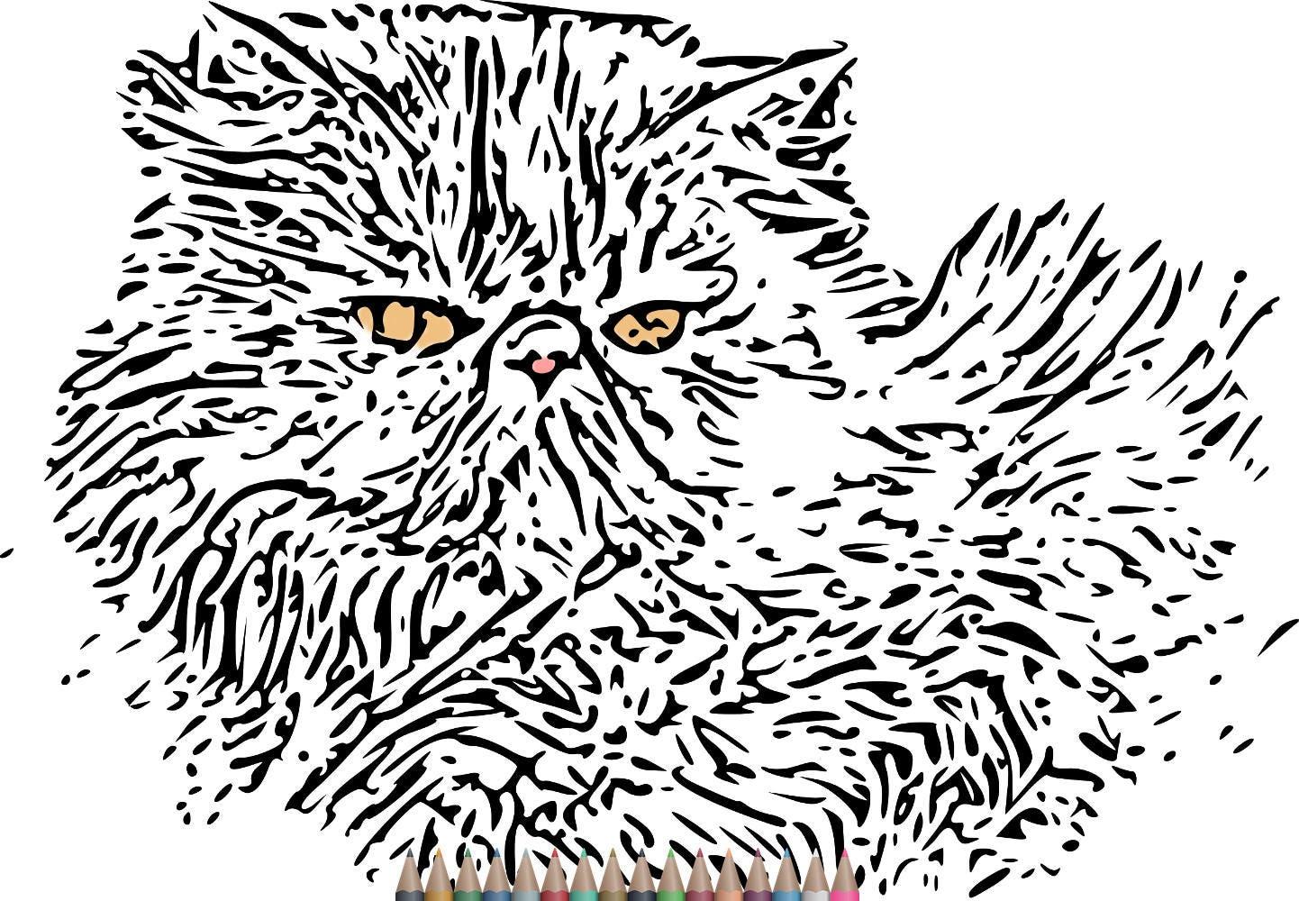 Páginas de para colorear de Pages.Cat colorear adultos