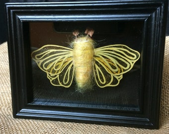 Goldfinger Moth Faux Taxidermy