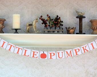 Fall Pumpkins Baby Shower Signs - PUMPKIN Decor BABY SHOWER Banner - Autumn rustic baby shower decorations