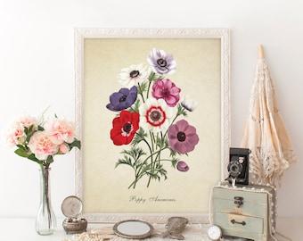 Botanical Print, Poppy Anemones Print, Home Decor, Poppy Anemones Botanical, Poppy Anemones Floral Print Anemones Bouquet Reproduction FL060